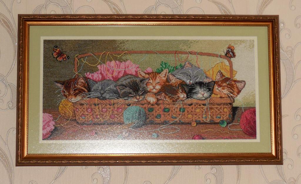 Нажмите на изображение для увеличения.  Название:оформленные котята.jpg Просмотров:282 Размер:122.5 Кб ID:156895