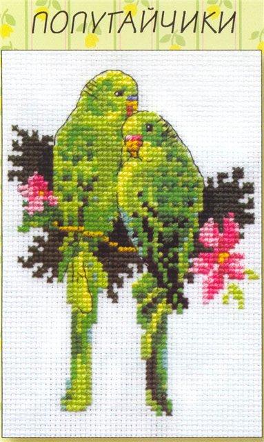 волнистых попугайчика.jpg