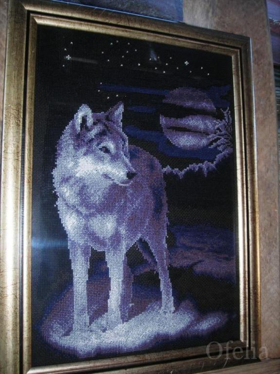 Название: белый волк.jpg