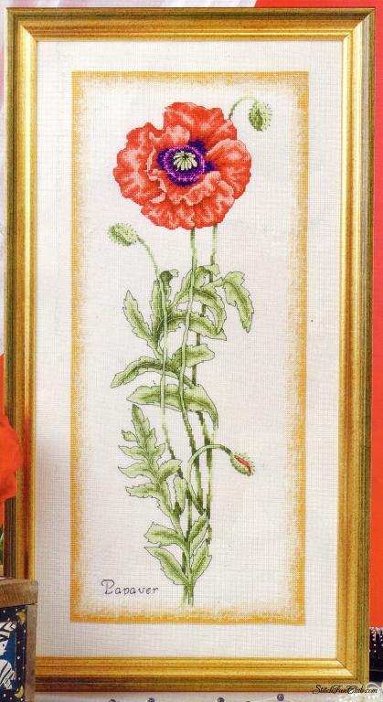 Нажмите на изображение для увеличения.  Название:1245427361_botanical-poppy-anchor1.jpg Просмотров:168 Размер:62.8 Кб ID:75188