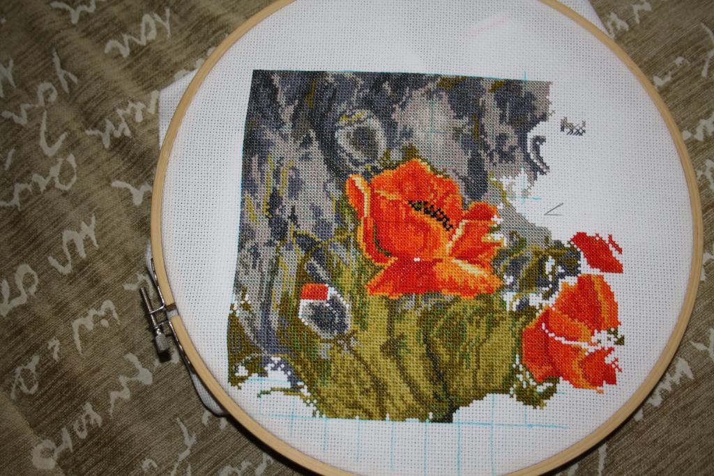 Нажмите на изображение для увеличения.  Название:guyana маки 18.12.2011-01.jpg Просмотров:166 Размер:155.0 Кб ID:81306