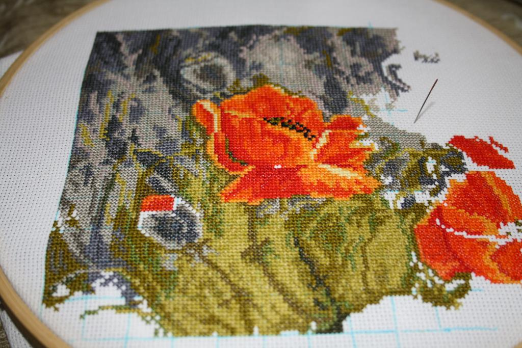 Нажмите на изображение для увеличения.  Название:guyana маки 18.12.2011-02.jpg Просмотров:177 Размер:132.4 Кб ID:81307