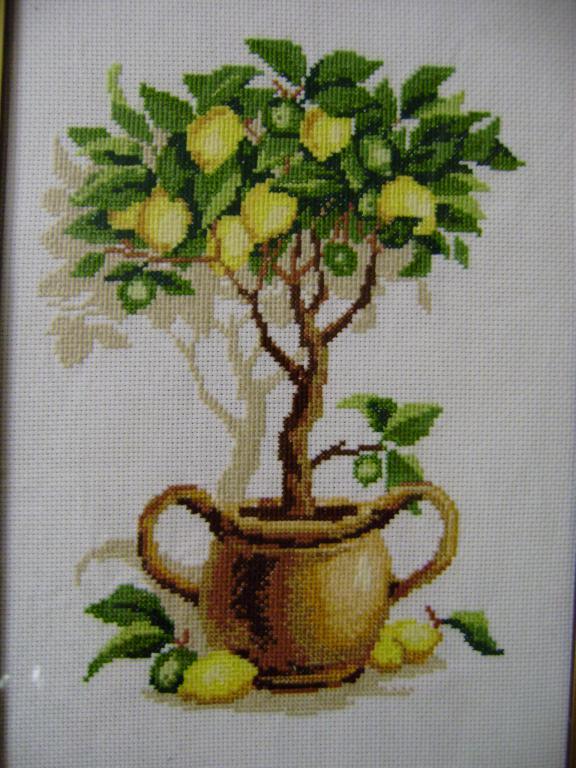Нажмите на изображение для увеличения.  Название:Лимонное дерево (4).jpg Просмотров:196 Размер:81.8 Кб ID:88757