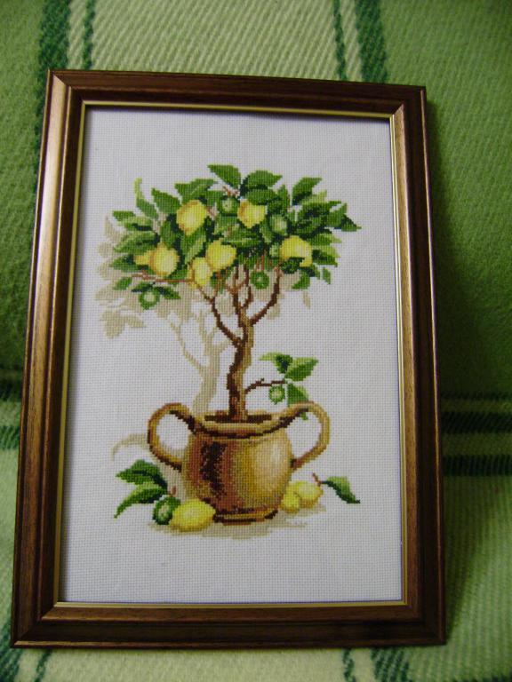 Нажмите на изображение для увеличения.  Название:Лимонное дерево (5).jpg Просмотров:220 Размер:72.3 Кб ID:88758