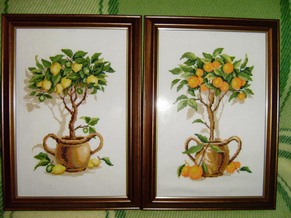 Нажмите на изображение для увеличения.  Название:Апельсиновое и Лимонное деревья.jpg Просмотров:538 Размер:129.6 Кб ID:88759