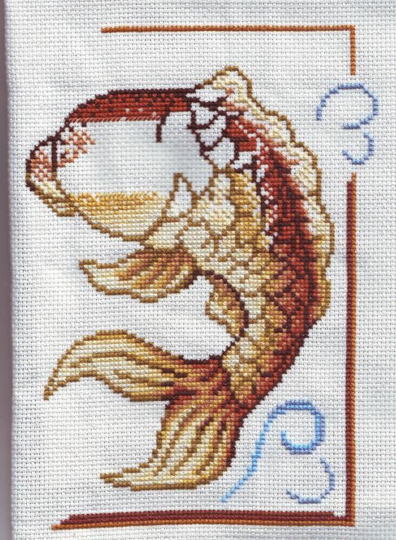 Нажмите на изображение для увеличения.  Название:musyte залотая рыбка 28.02.2012.jpg Просмотров:550 Размер:126.6 Кб ID:102927