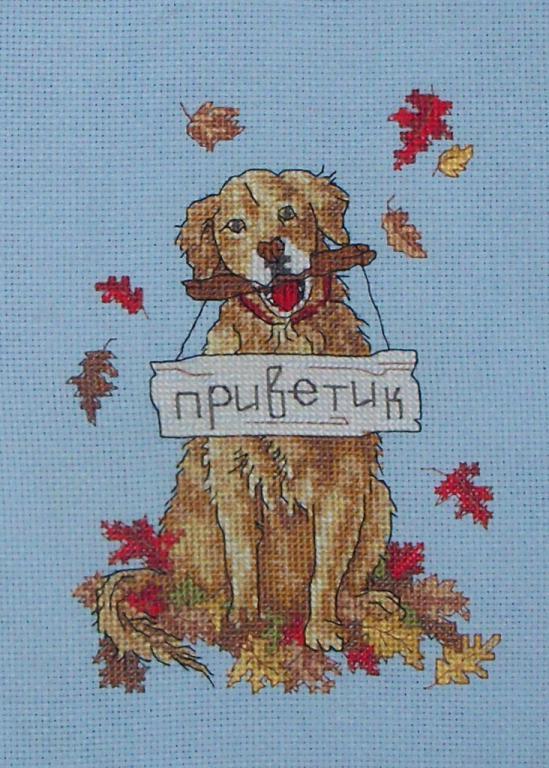 Нажмите на изображение для увеличения.  Название:Собака (февраль 2013).jpg Просмотров:151 Размер:85.3 Кб ID:107071