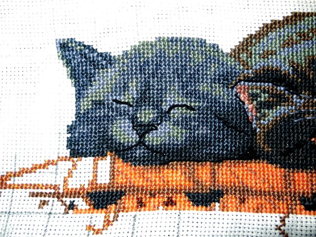 Нажмите на изображение для увеличения.  Название:коты 003.jpg Просмотров:232 Размер:226.1 Кб ID:129014