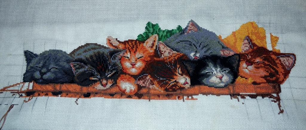 Нажмите на изображение для увеличения.  Название:коты 001.jpg Просмотров:305 Размер:134.8 Кб ID:129015