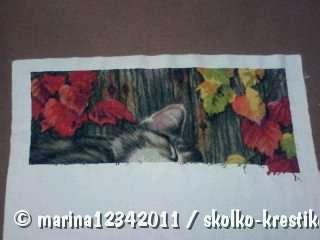 Нажмите на изображение для увеличения.  Название:кот.jpg Просмотров:173 Размер:10.0 Кб ID:154794