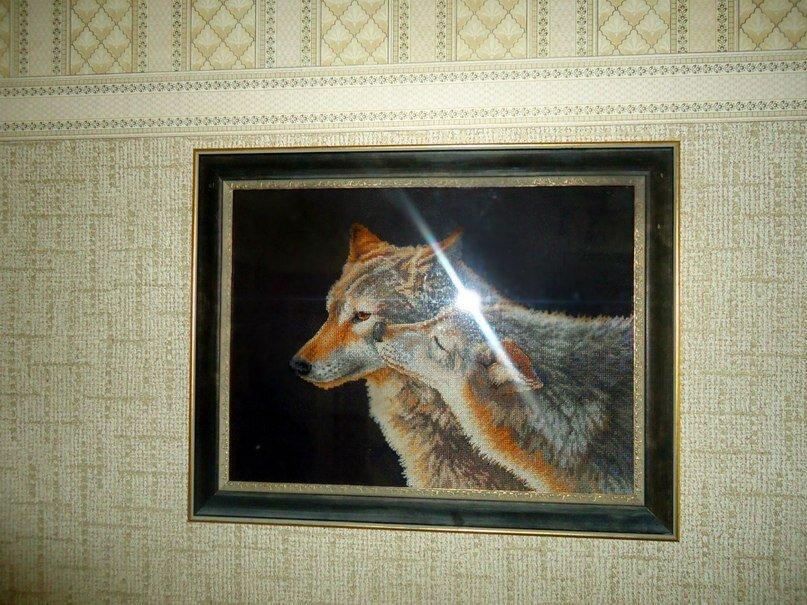 Вышивка поцелуй волка примета 31